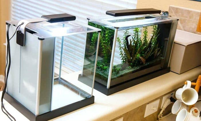 aquarium-light-timer