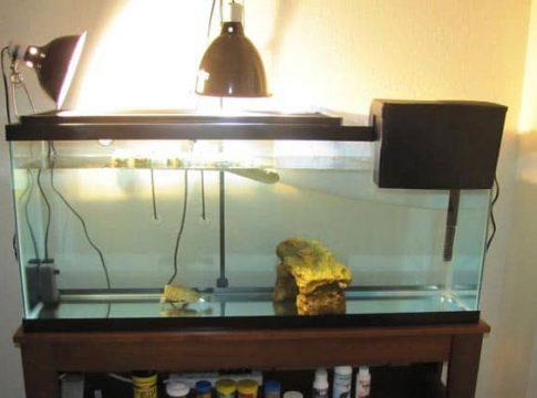 aquarium-filter-55-gallon