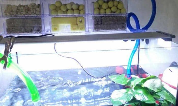 aquarium-filter-media-01