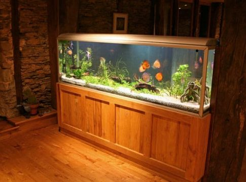 The features of your aquarium must be taken into account when looking for the right stand. A heavier and larger tank must be supported by an appropriate stand that is both sturdy and strong. The strength of the stand should conform to the gallon capacity of the aquarium. In addition to this, there are a few stands that are specially made to accommodate tanks that come with bow-shaped fronts; on the other hand, there are also those that are made to have the capability to uphold tanks that are rectangular in shape. This makes it very essential to select a stand that is well fitted to the tank's shape. Fortunately, the best aquarium stand reviews below can greatly assist you as you come up with the best possible option for your needs and preferences. As you can see, you can only effectively pick the appropriate aquarium stand for your tank if you carefully take into consideration the shape, weight, and size of your aquarium. Moreover, investing in a stand that is unsuitable for your aquarium, for example, may only result in crumbling, endangering and degrading your aquarium occupants. To help you select the best possible option, examine the best aquarium stand reviews below!